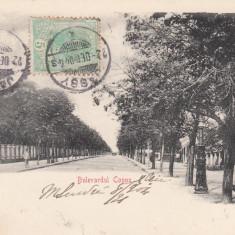IASI, BULEVARDUL COPOU, TCV, CLASICA, CIRCULATA DEC. 1904 - Carte Postala Moldova pana la 1904, Printata