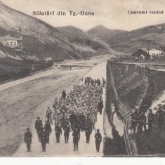 TARGU OCNA, SALUTARI DIN TG.-OCNA, CONVOIUL (DETINUTILOR) VENIND DE LA SALINA - Carte Postala Moldova pana la 1904, Necirculata, Printata