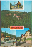 CPI (B6862) CARTE POSTALA - PALTINIS