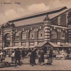 OLTENIA, TURNU SEVERIN, PIATA - Carte Postala Oltenia 1904-1918, Drobeta-Turnu Severin, Necirculata, Printata