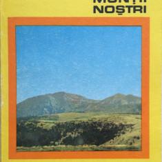 Colectia Muntii Nostrii - MUNTII RODNEI - I. Buta - Ghid de calatorie