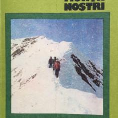 Colectia Muntii Nostrii - FAGARAS - V. Balaceanu, H. Cristea - Ghid de calatorie