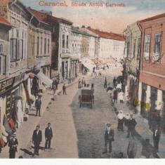 OLTENIA, CARACAL, STRADA ANTON CARACALA, MAGAZINE, TRASURI - Carte Postala Oltenia 1904-1918, Necirculata, Printata