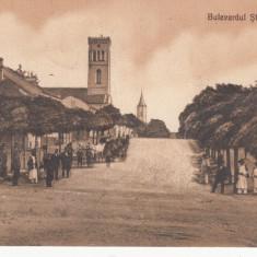 CALAFAT, BULEVARDUL STIRBEY- VODA, CIRCULATA - Carte Postala Oltenia dupa 1918, Printata