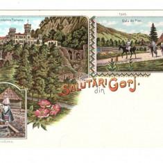 CARTI POSTALE VECHI ROMANIA-SALUTARI DIN GORJ-NECIRCULATA - Carte Postala Oltenia dupa 1918, Printata