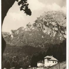 CPI (B6881) CARTE POSTALA - BUSTENI - Carte Postala Muntenia dupa 1918, Circulata, Fotografie