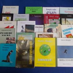 LOT 21 CARTI POEZIE ROMANEASCA CONTEMPORANA - 1995/2012 ( VEZI DESCRIEREA ) !!! - Carte poezie