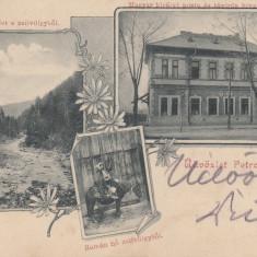 PETROSANI, SALUTARI DIN PETROSANI, CLASICA, CIRCULATA AUG. ''903 - Carte Postala Transilvania pana la 1904, Printata