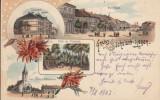 REGHINUL SASESC PIATA  GIMNAZIUL BISERICA EV. SC.FETE  PROMENADA LITOGRAFIE 1903, Circulata, Printata, Reghin