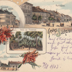 REGHINUL SASESC PIATA GIMNAZIUL BISERICA EV. SC.FETE PROMENADA LITOGRAFIE 1903 - Carte Postala Transilvania pana la 1904, Circulata, Printata