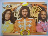 Film/Cinema - Carte postala actori Formatia Bee Gees, Alta editura