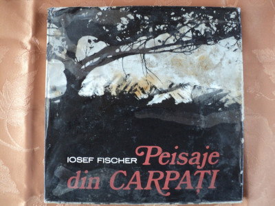 PEISAJE DIN CARPATI - IOSEF FISCHER foto