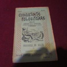 XXX CUNOSTINTE FOLOSITOARE TEODOR DUMITRESCU - FRIGURILE DE BALTA - Carte veche
