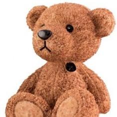 Pusculita Teddy Bear Maro - Pusculita copii