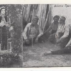 SILISTRA-TIPURI, NECIRCULATA - Carte Postala Dobrogea dupa 1918, Printata
