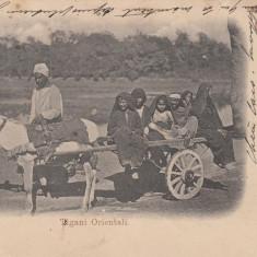 DOBROGEA, TIGANI ORIENTALI, CLASICA , CIRCULATA, Printata