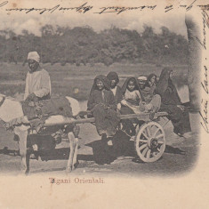 DOBROGEA, TIGANI ORIENTALI, CLASICA, CIRCULATA - Carte Postala Dobrogea pana la 1904, Printata