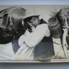 Fotografie originala, film romanesc, Impuscaturi sub clar de luna, 16,5/12, Necirculata