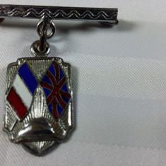INSIGNA MILITARA - FRANCO BRITANICA