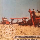 DOBROGEA IN MARS - Petru Vintila - Carte Monografie