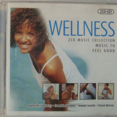 Wellness - Muzica Chillout, CD