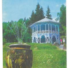7186 - Romania ( 295 ) - Bistrita Nasaud, SANGEORZ BAI - postcard - unused - Carte Postala Transilvania dupa 1918, Necirculata, Printata
