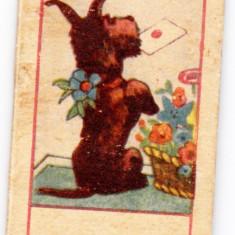 Calendar de buzunar crestin anul 1947 cu toate sarbatorile si zilele onomastice - Calendar colectie