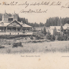 BORSEC, BAD-BORSZEK-FURDO, VILA EMA SI VILA IRENE, CIRC.1910 - Carte Postala Transilvania pana la 1904, Circulata, Printata