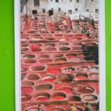 HOPCT 22281 MAROC -FES [NECIRCULATA], Printata