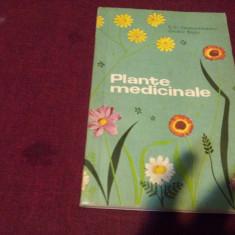 XXX GR CONSTANTINESCU - PLANTE MEDICINALE
