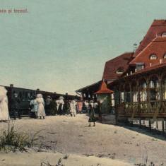 CONSTANTA, MAMAIA, GARA SI TRENUL - Carte Postala Dobrogea 1904-1918, Necirculata, Printata
