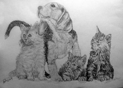 Desen In Creion Caine Si Pisici A4 De Bissinger Antoniu 2009 67
