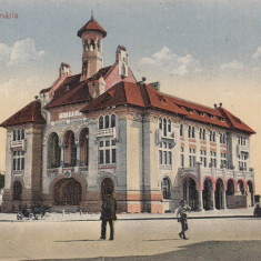 CONSTANTA, PRIMARIA - Carte Postala Dobrogea 1904-1918, Necirculata, Printata