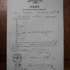 Craiova, Bilet pentru exportul vitelor eliberat negustorului Petru Negulescu, 1855 - Pasaport/Document