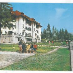 7369 - Romania ( 316 ) - Brasov, PREDEAL - postcard - unused - Carte Postala Transilvania dupa 1918, Necirculata, Printata