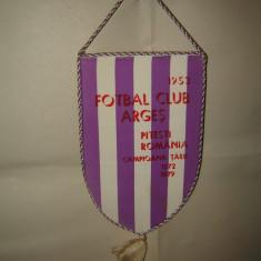 Fanion Fotbal Club Arges
