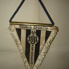 Fanion Clubul Sportiv Jiul Petrosani