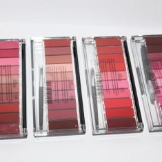 Paleta Ruj si Gloss 10 culori Trusa machiaj buze