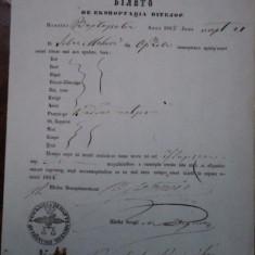 Orsova, bilet de export vite negustor Ivan Milova 1855 - Pasaport/Document