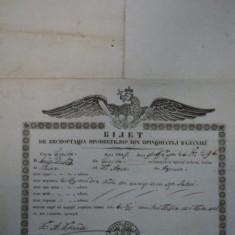 Braila, bilet de export cereale pentru negustorul Iosif David catre kir Asan din Turcia, 1847 - Pasaport/Document