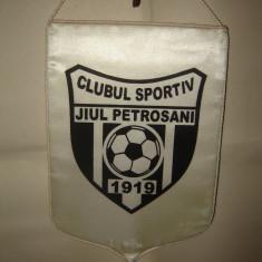 Fanion Clubul Sportiv Jiul Petrosani 1919 mare