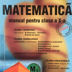 MATEMATICA MANUAL PENTRU CLASA A X-A - Marius Burtea, Georgeta Burtea - Manual scolar, Clasa 10, Carminis