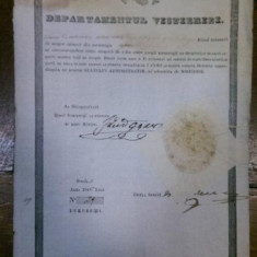 Brevet de mester croitor Gana Pavlica 1846 - Diploma/Certificat