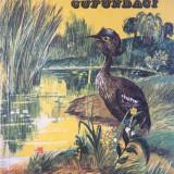 NANI PUI DE CUFUNDACI - Aurel Iordache - Carte educativa