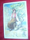 Ilustrata - Femeie in Costum National din Peninsula Istria - Croatia, Necirculata, Printata