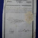 Mehedinti, Departamentul Vistieriei, Brevet de mester cojocar pentru Gheorghe Iacob 1846