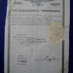 Mehedinti, Departamentul Vistieriei, Brevet de mester cojocar pentru Gheorghe Iacob 1846 - Diploma/Certificat