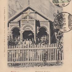 BUSTENI, ATELIERUL SCOLAR, CLASICA, TCV, CIRCULATA 1905 - Carte Postala Muntenia pana la 1904, Printata