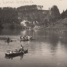 DOBRESTI, LACUL ZEROFOASA - Fotografie, Alb-Negru, Natura, Romania 1900 - 1950