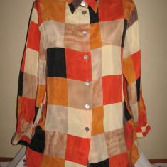 Camasa culori superbe, Mar 40/ 42 - Camasa dama, Culoare: Multicolor, Maneca lunga, Universala